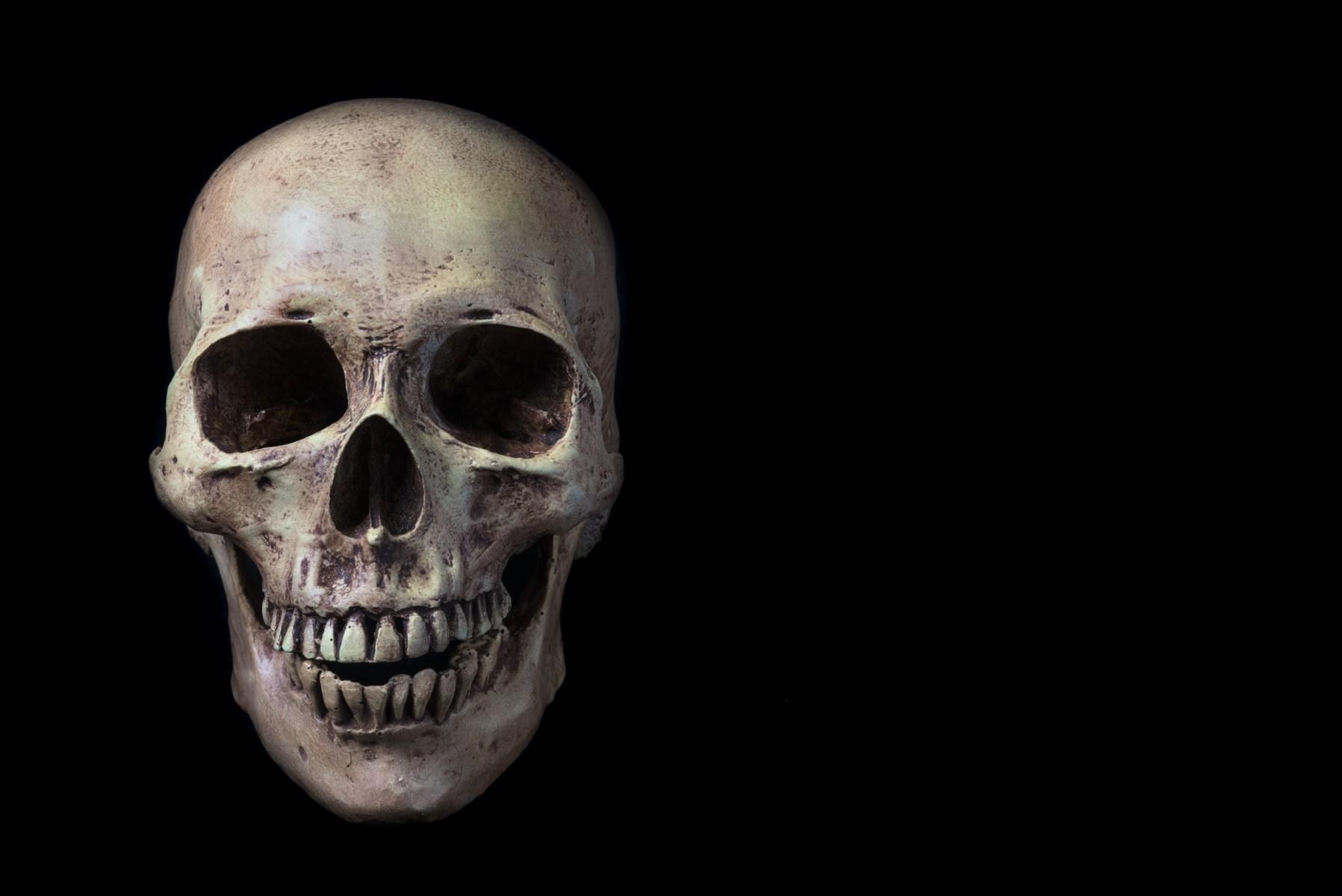 human cousin bones found