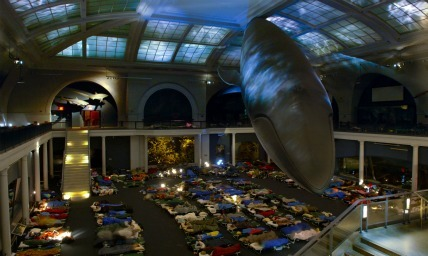 Kids' Night at the Museum