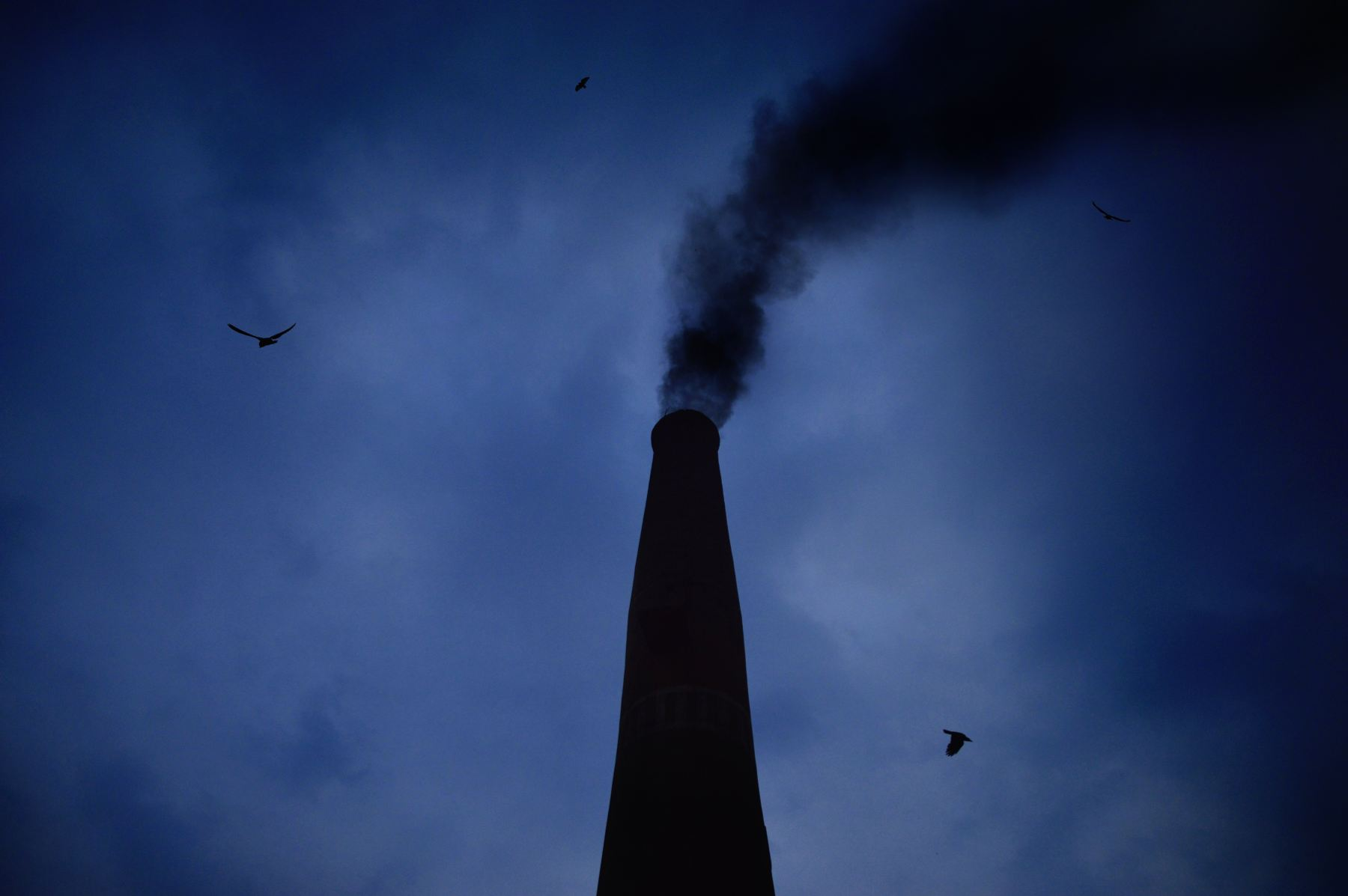 Incinerators in the US expose nearby residents to toxic pollutants