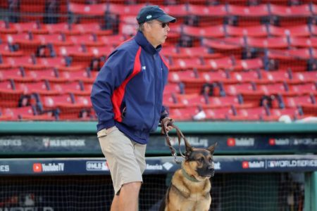 David Mellor, Senior Director of Grounds for the Boston Red Sox, and his dog Drago. (Alex Trautwig/MLB Photos via Getty)