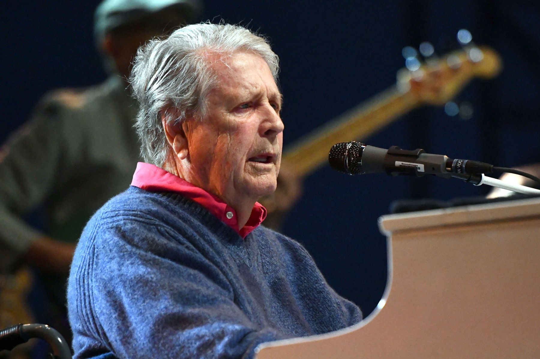 Brian Wilson performs onstage at BeachLife Festival.