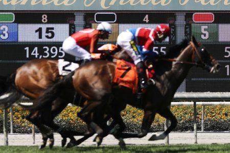 Horses run on the final day of the season at Santa Anita Park. (Mario Tama/Getty)