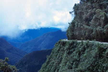 Bolivian rainforest