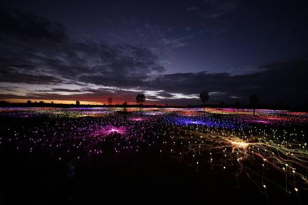 Bruce Munro Field of Light Paso Robles