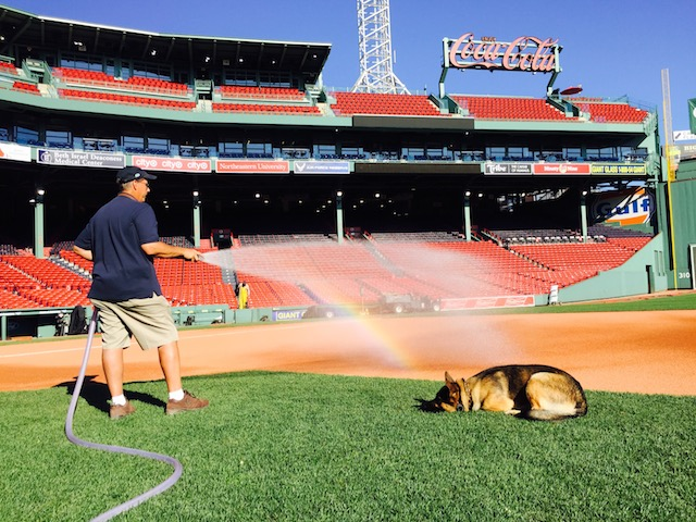 David Mellor, Senior Director of Grounds for the Boston Red Sox, and his dog Drago. (Jackson Holewa)