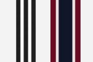 Adidas and J.Crew Stripes