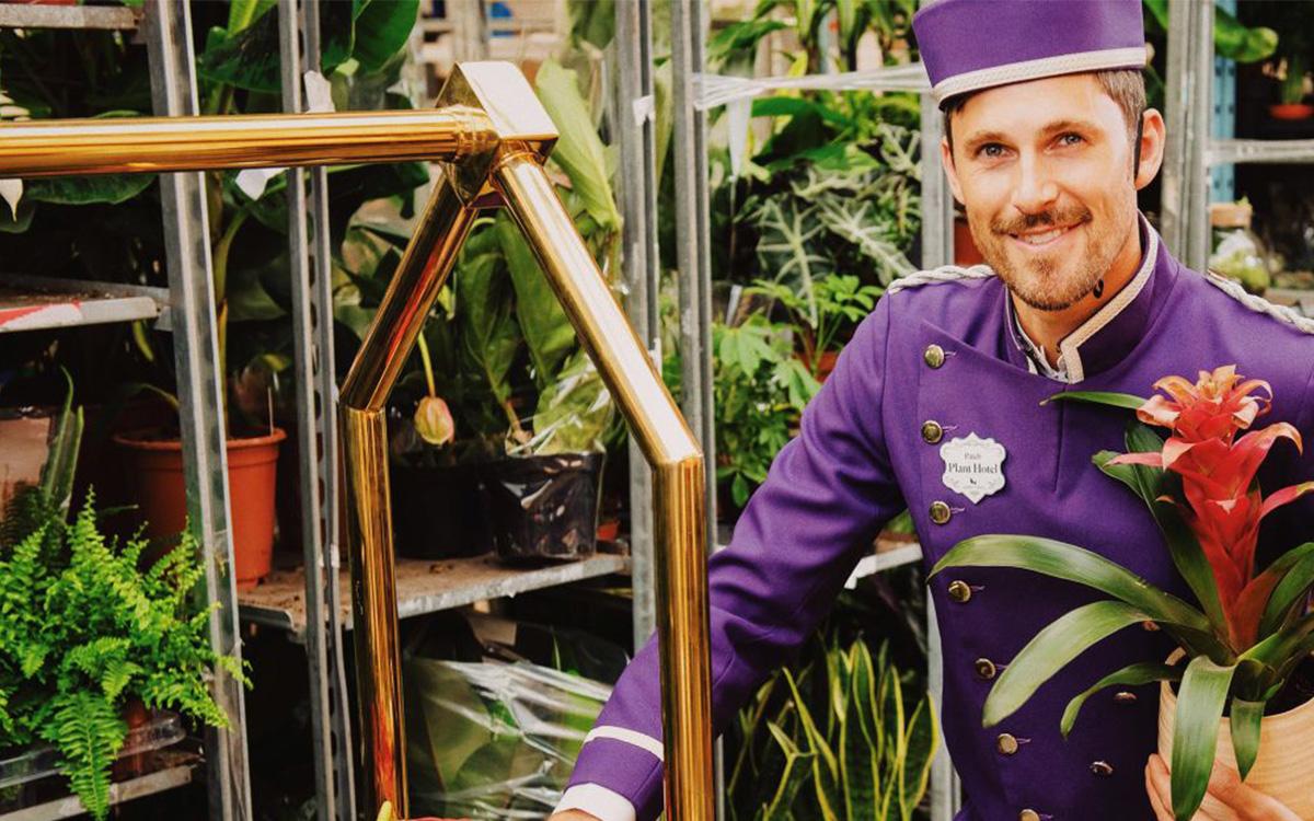 The World's First Houseplant Hotel - InsideHook