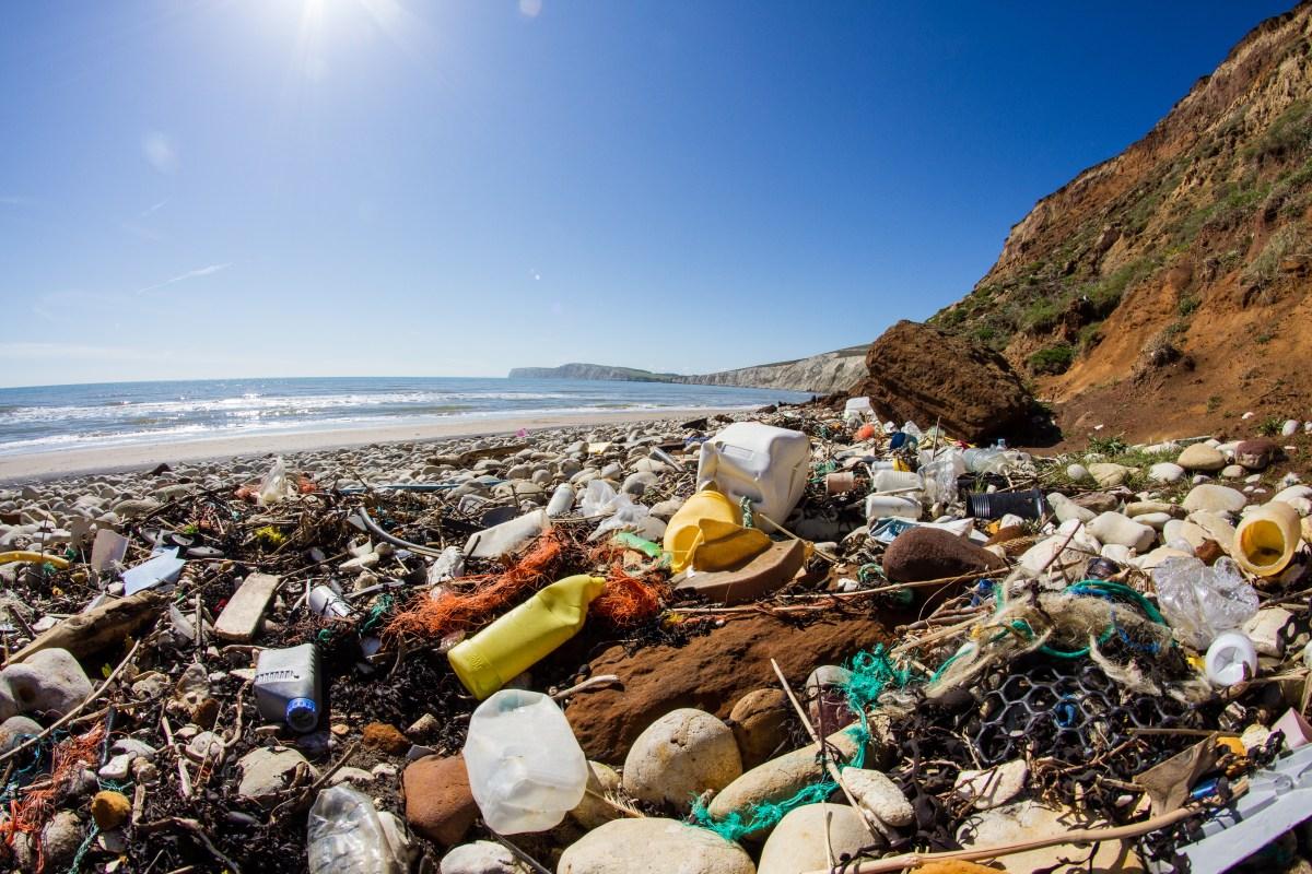 The Caribbean Has the Highest Per Capita Plastic Pollution