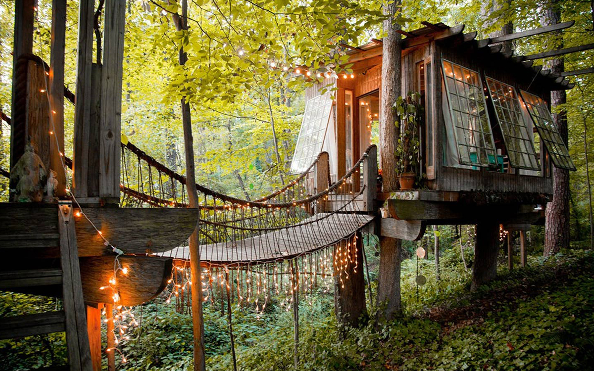 The Best Treehouses on Airbnb