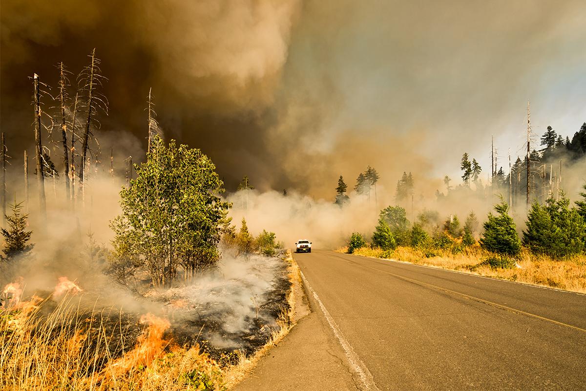 Jones Fire, Willamette National Forest, Lowell, Oregon