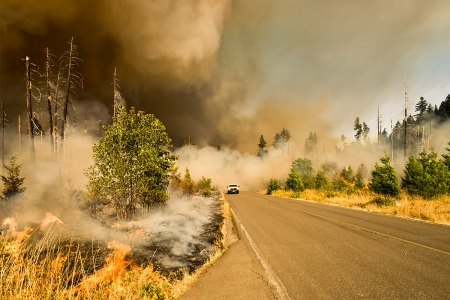 Jones Fire, Willamette National Forest, Lowell, Oregon