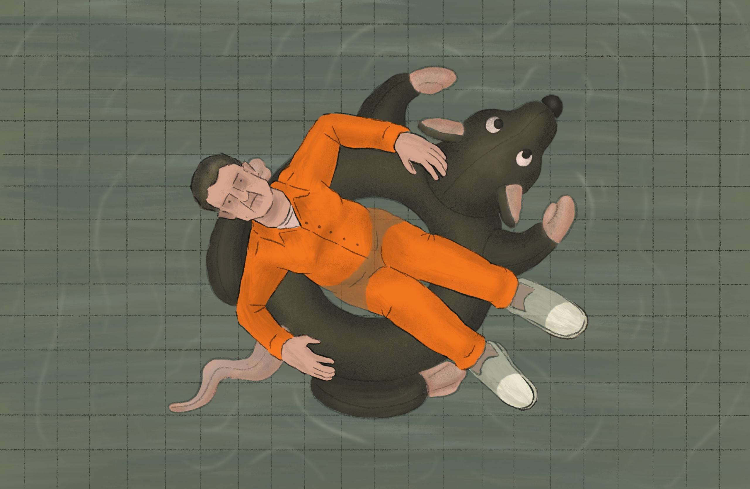 Michael Cohen prison