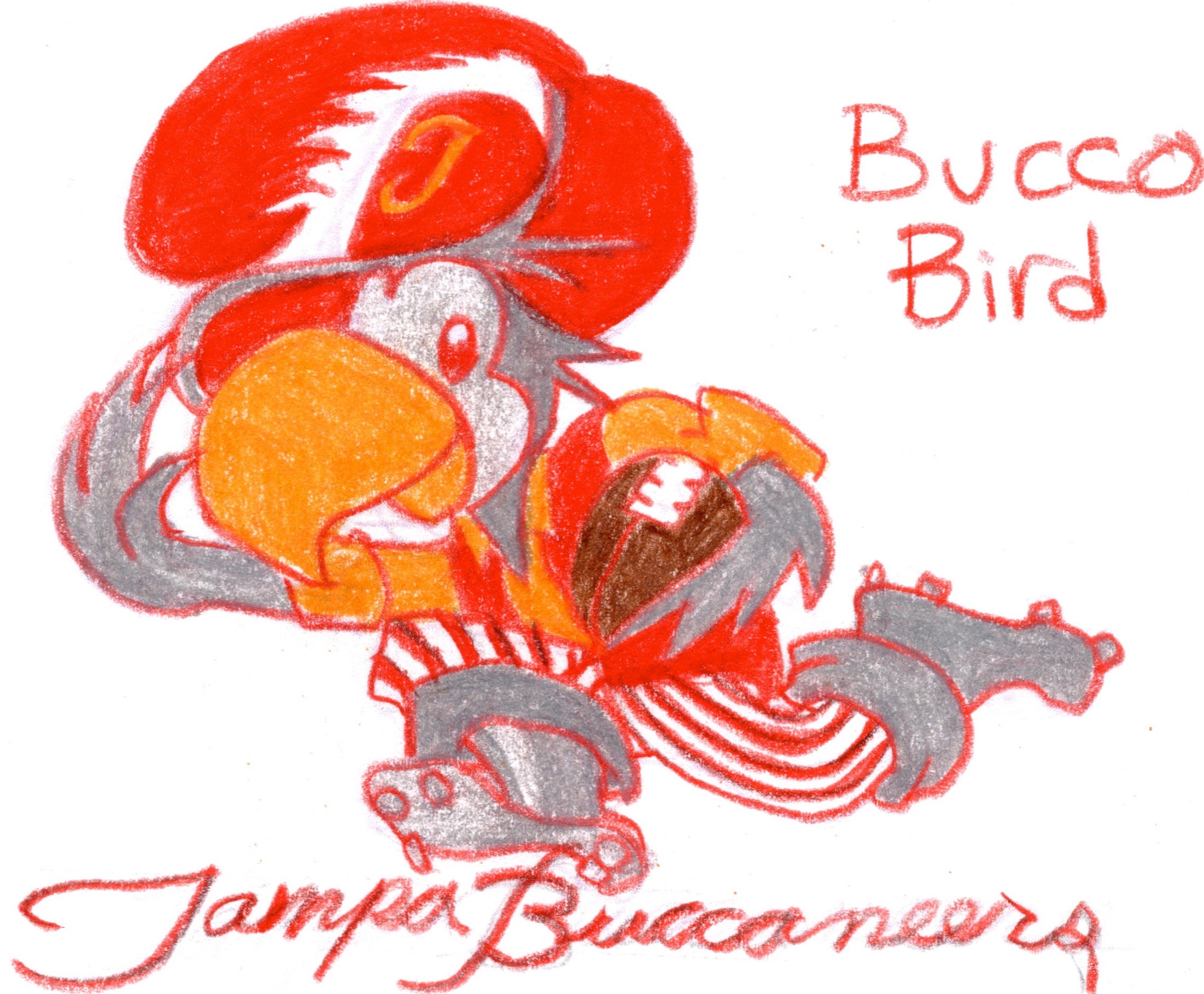 uniwatch tampa bay buccaneers redesign contest bierbaum