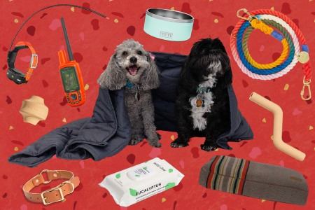 The 10 Best Gifts for Your Pets