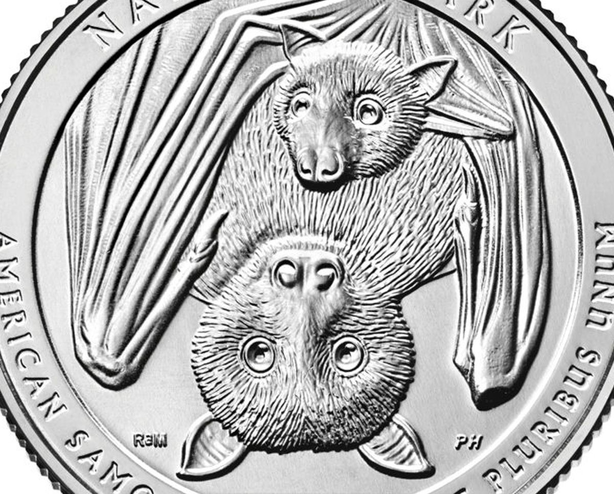 The new quarter will feature a baby Samoan fruit bat and its mother.