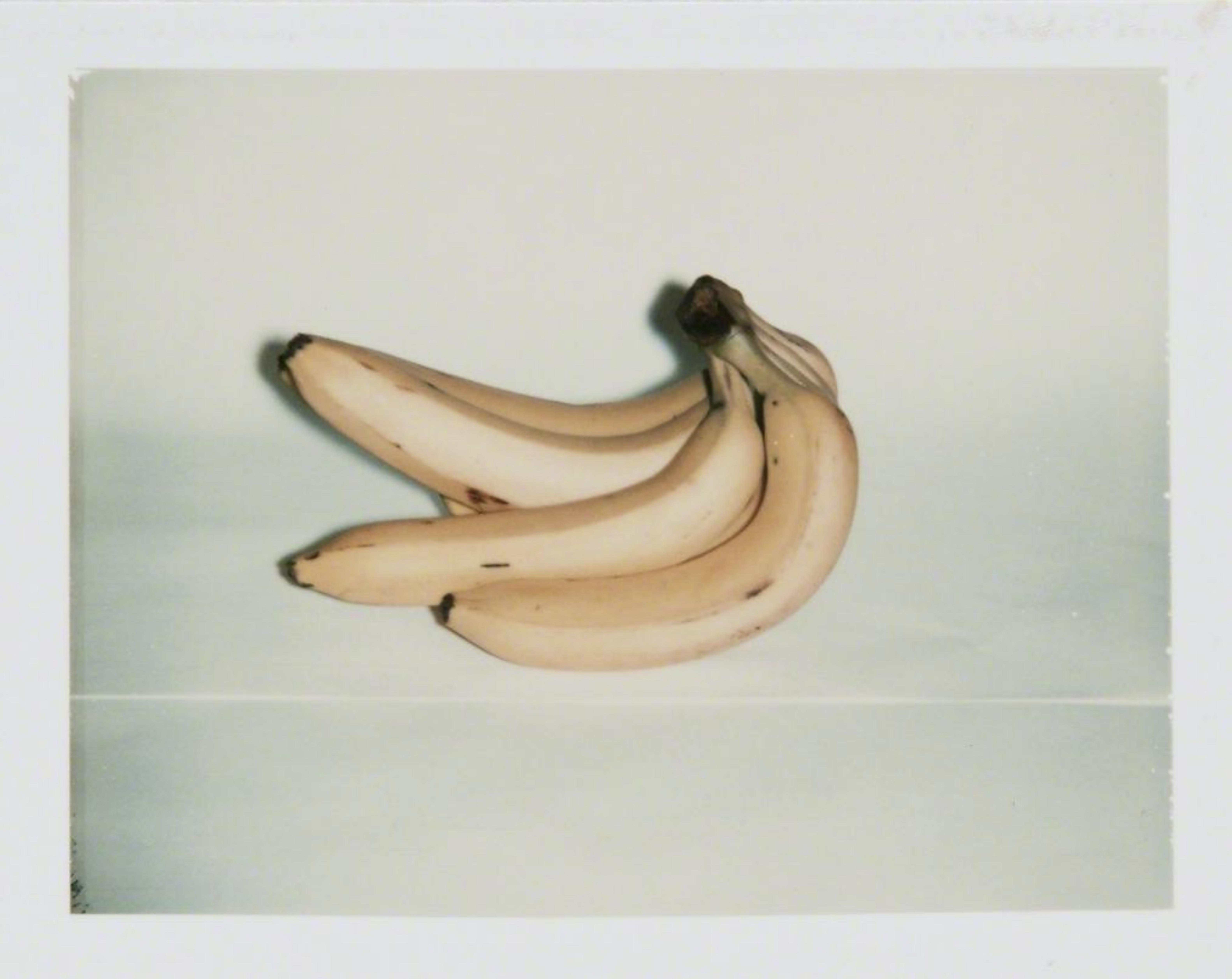 Andy Warhol bananas photo