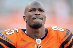 Former Bengal Chad Johnson will try out for the XFL. (Andy Lyons/Getty)
