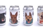 Adoptable Dog Cruiser cans