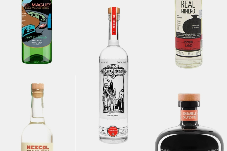 best mezcal bottles
