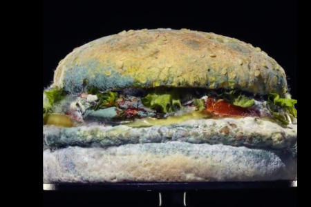 Burger King's Moldy Whopper Shows Off Chain's Preservative-Free Burgers