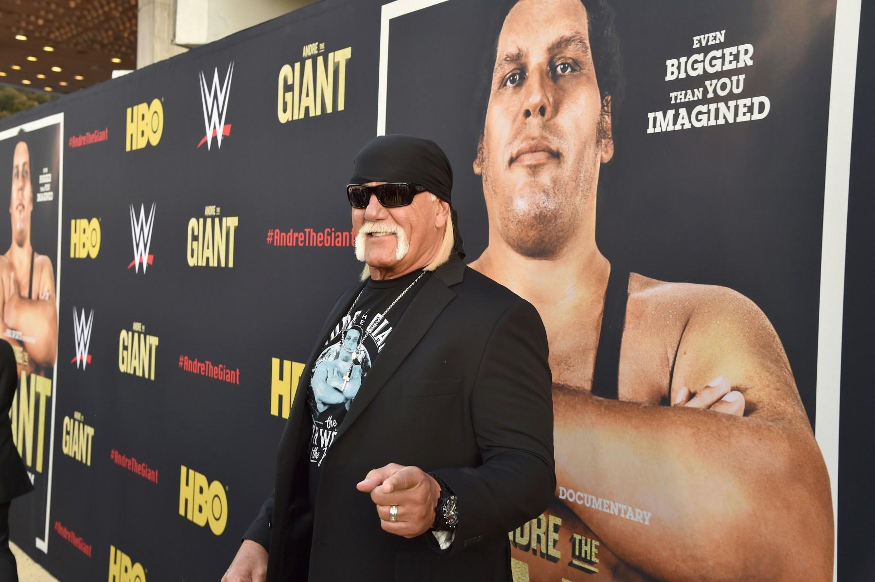 Hogan Andre WrestleMania