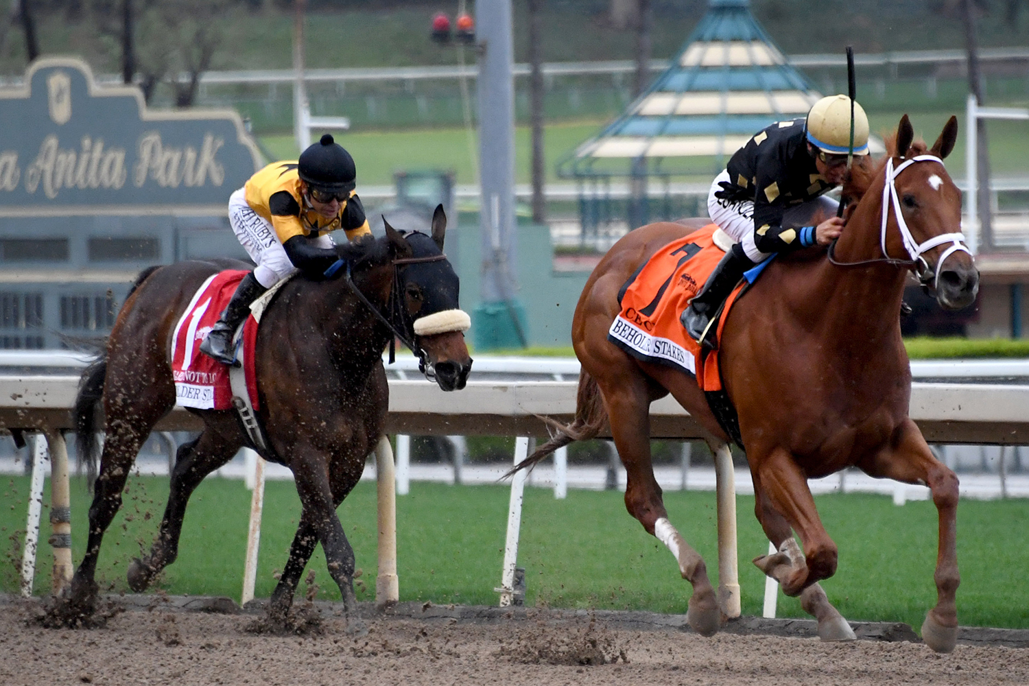 Horse Racing Is One of the Last Sports Standing in US