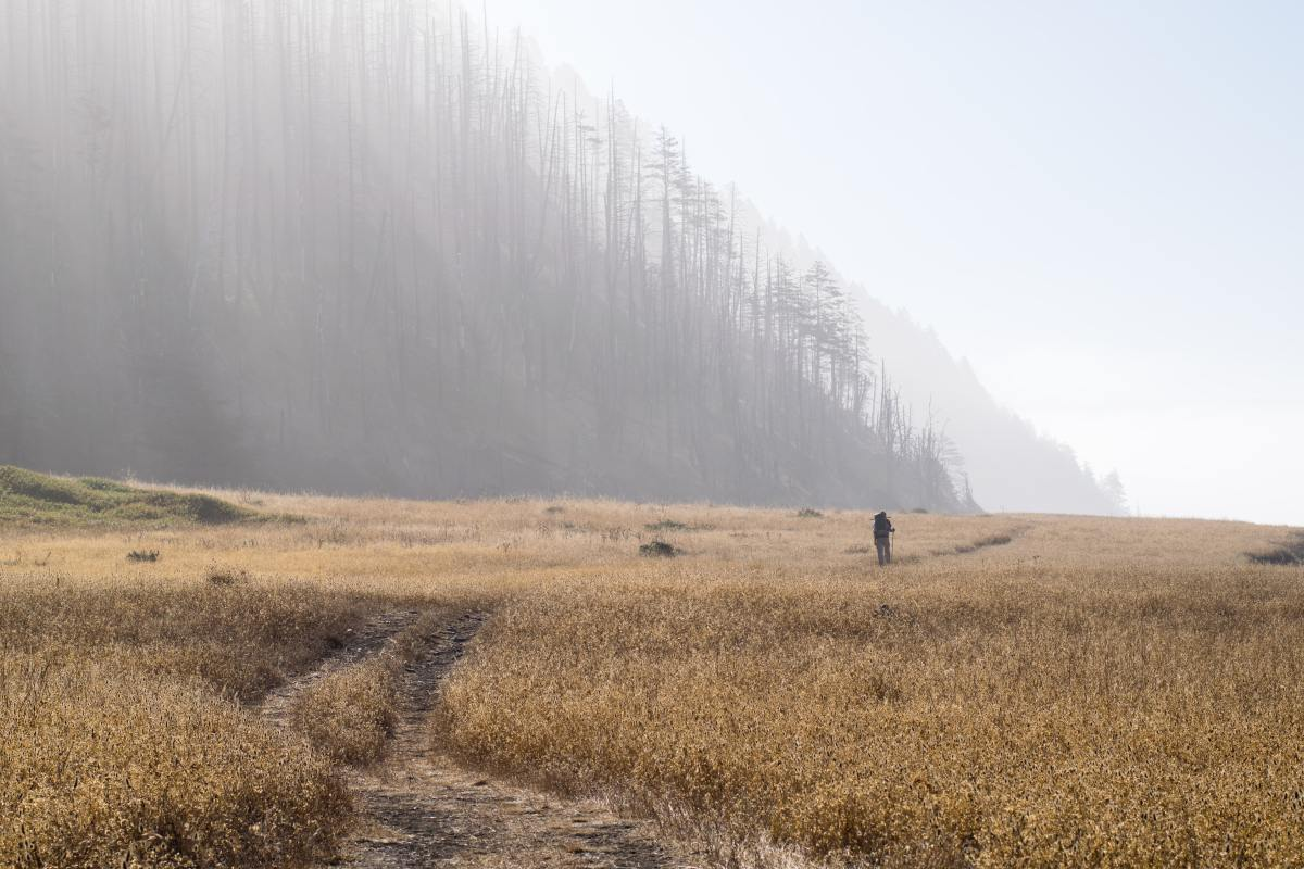 The Ultimate Northern California Adventure Bucket List