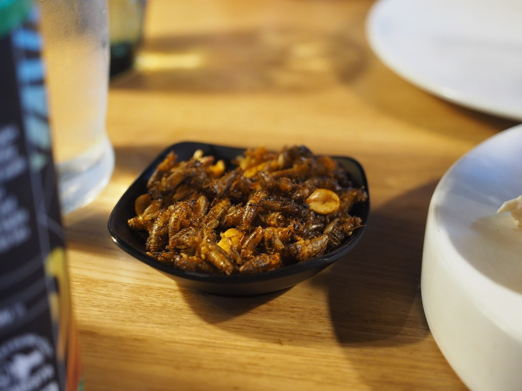 EU Food Safety Body Set to OK Edible Insects