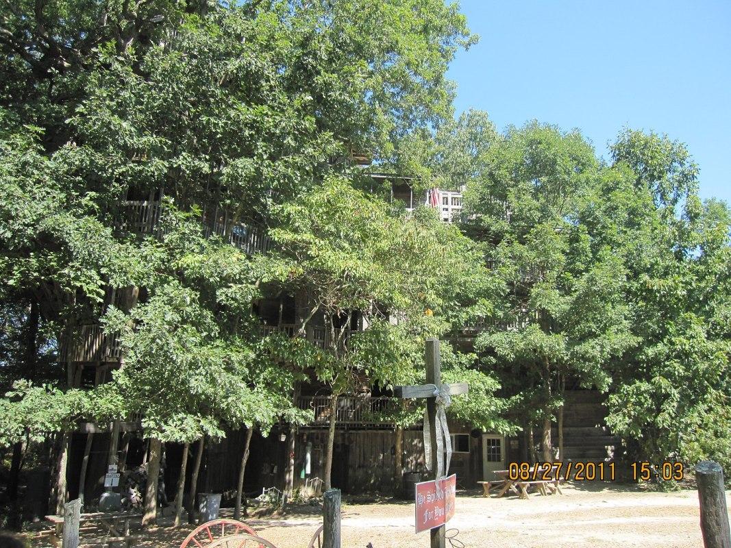 Massive treehouse