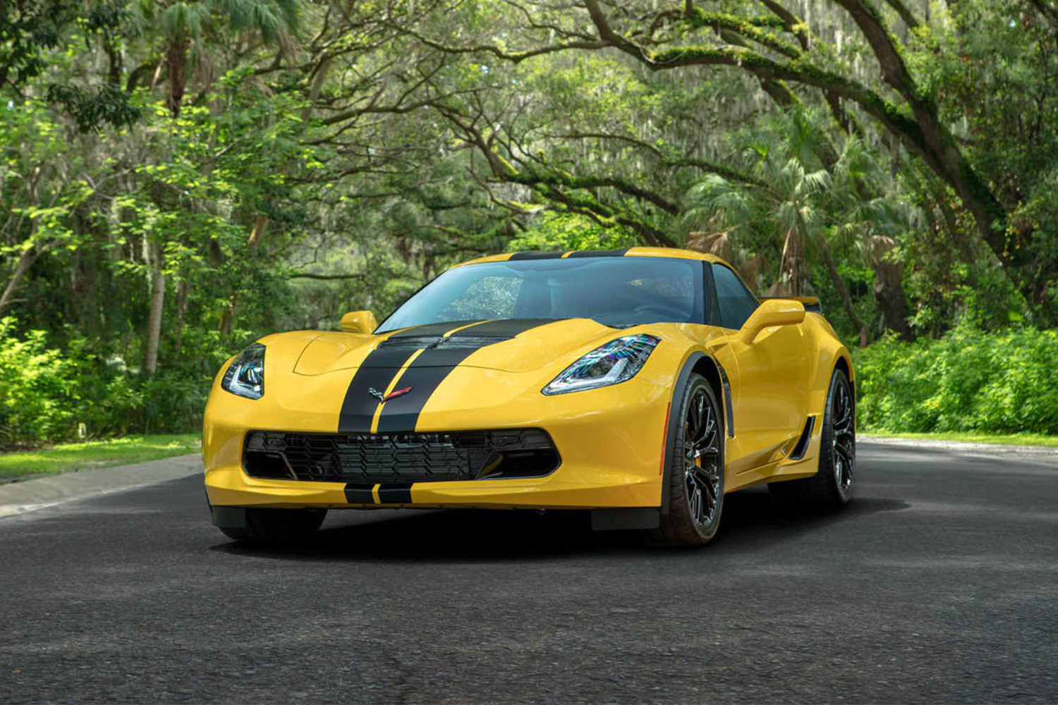 2019 Chevrolet Corvette Z06 Hertz 100th Anniversary Edition