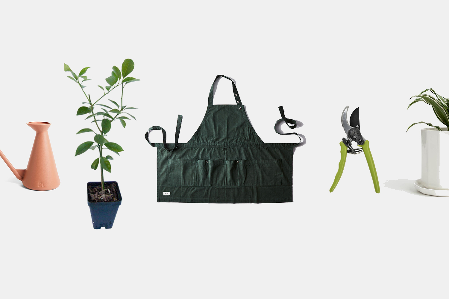 Everything You Need to Start Your Very Own Garden