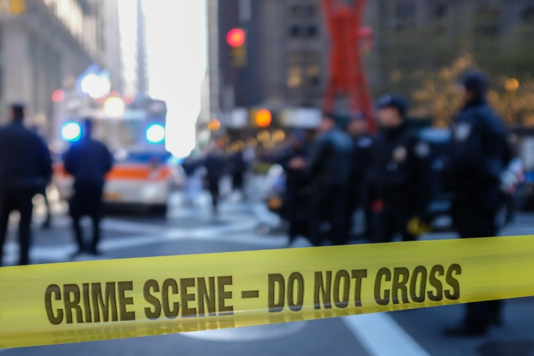 incel terrorism