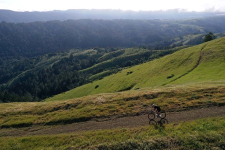 A cyclist riding a gravel bike through Lagunitas, California's Barnabe Mountain last month.