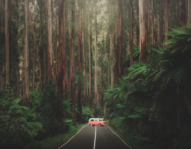 Karl Shakur Maroondah Highway Australia