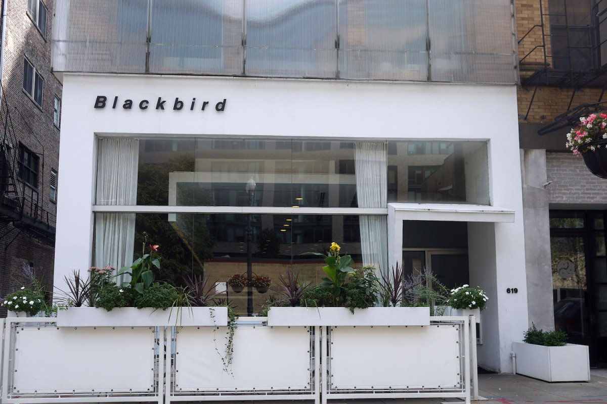 Blackbird won't reopen after closing in March
