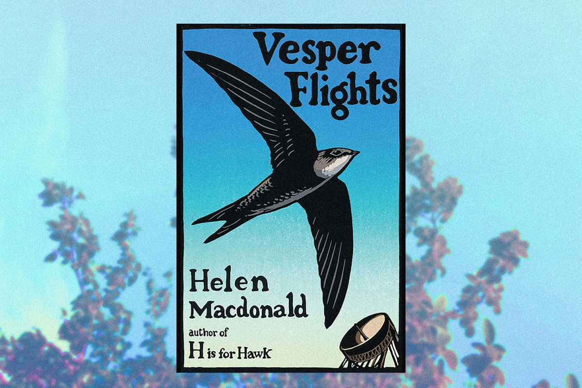 vesper flights book club