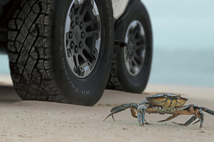 GMC electric Hummer EV SUV using the off-road Crab Mode next to an actual crab