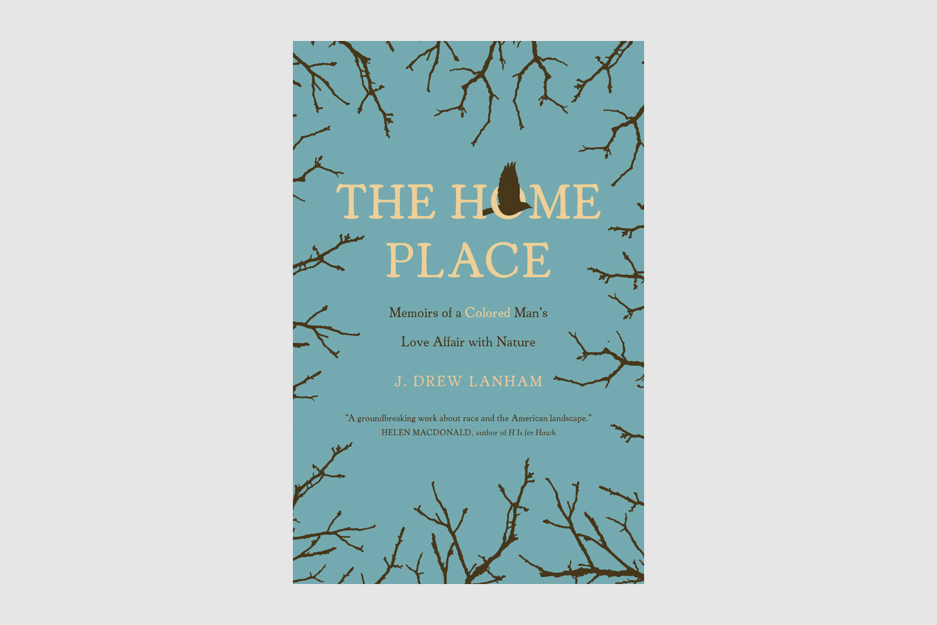 the home place drew lanham