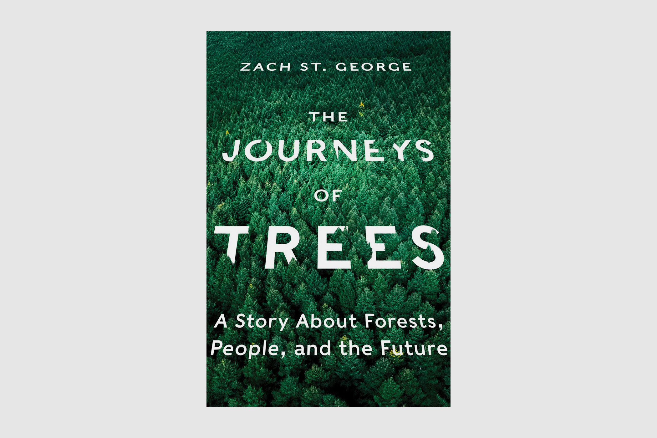 journeys of trees