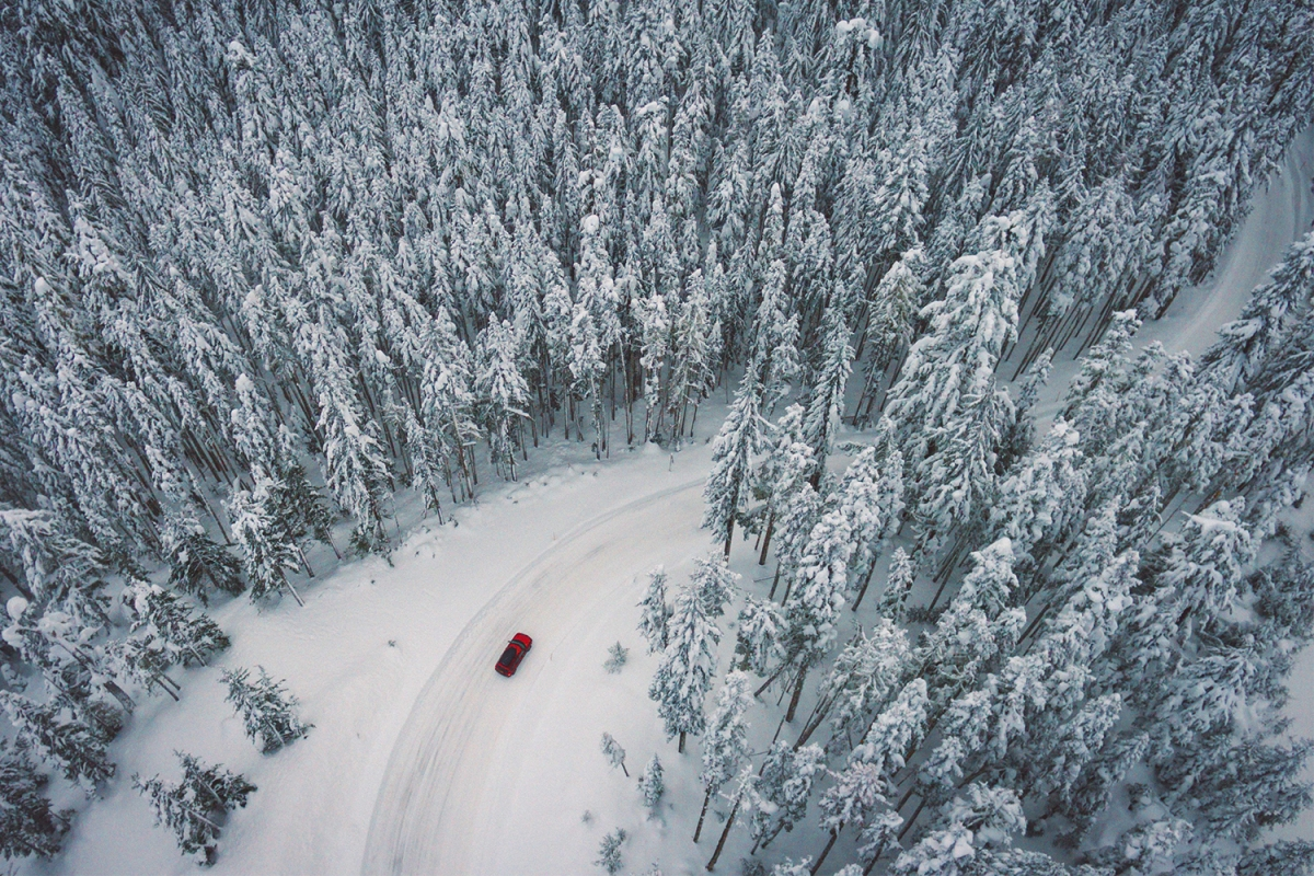 car driving snowy forest