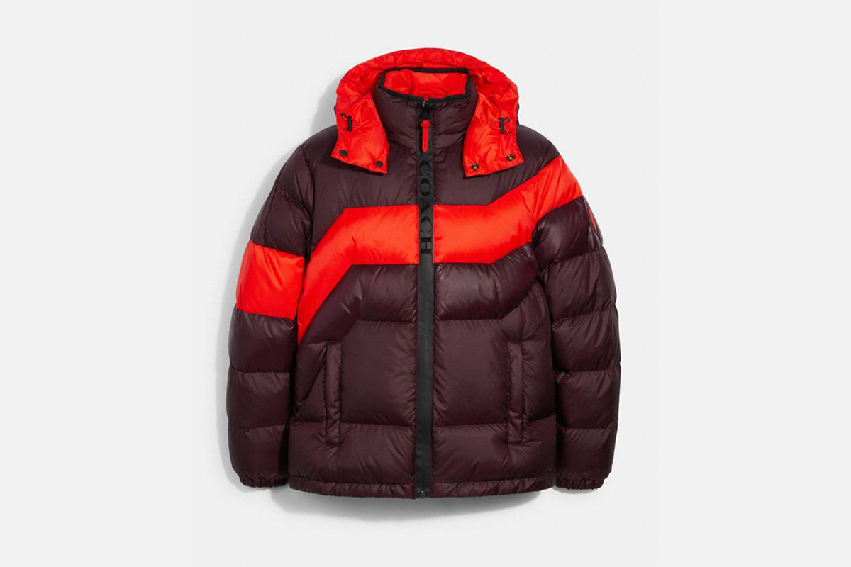 Coach hooded down jacket