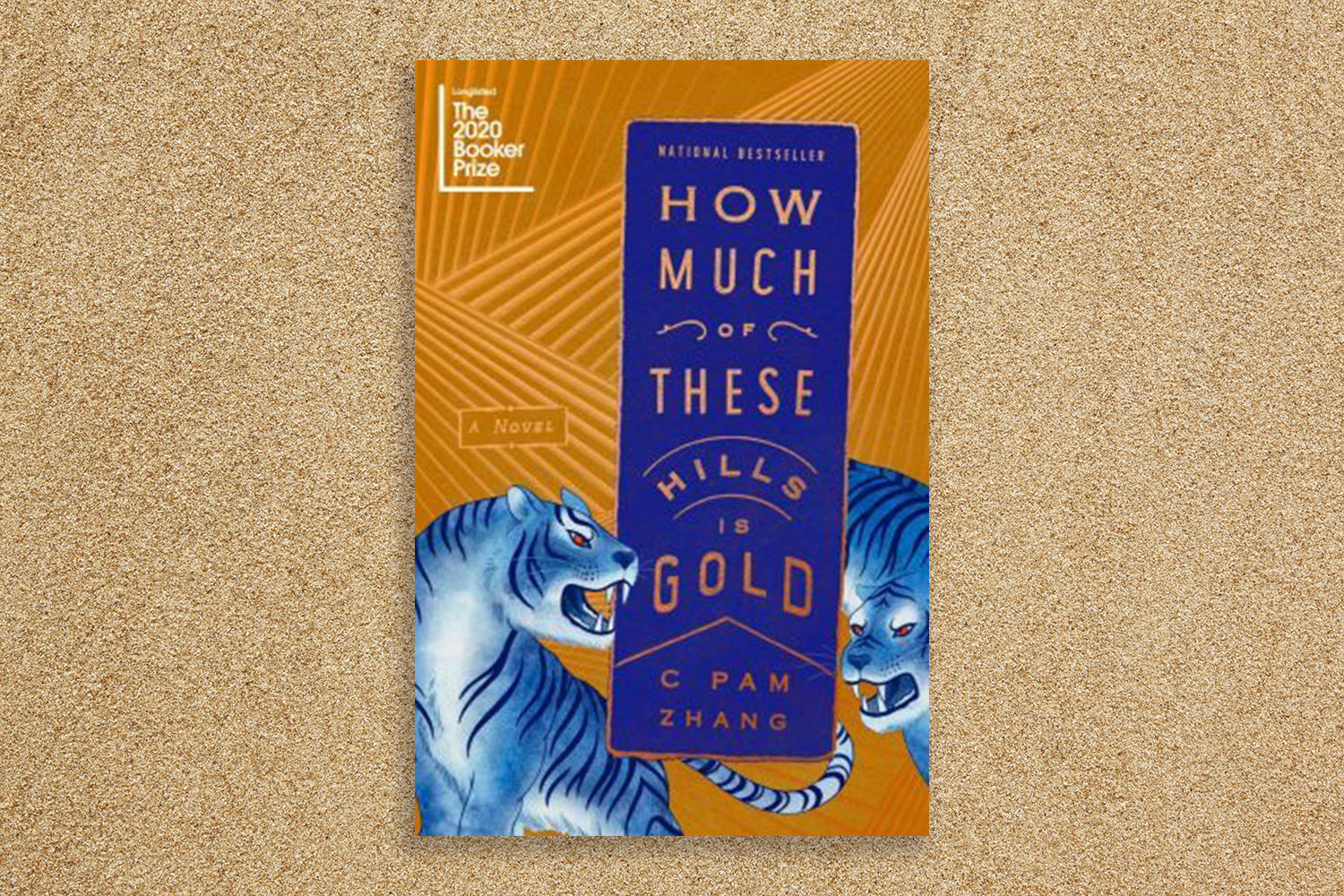 """""""How Much of These Hills Is Gold"""" cover."""