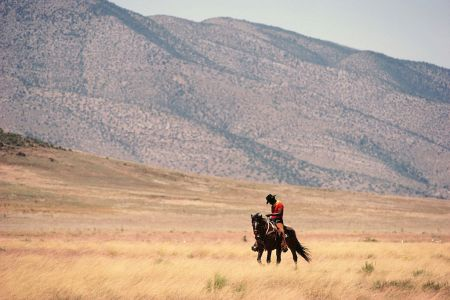 Man riding horse in landscape
