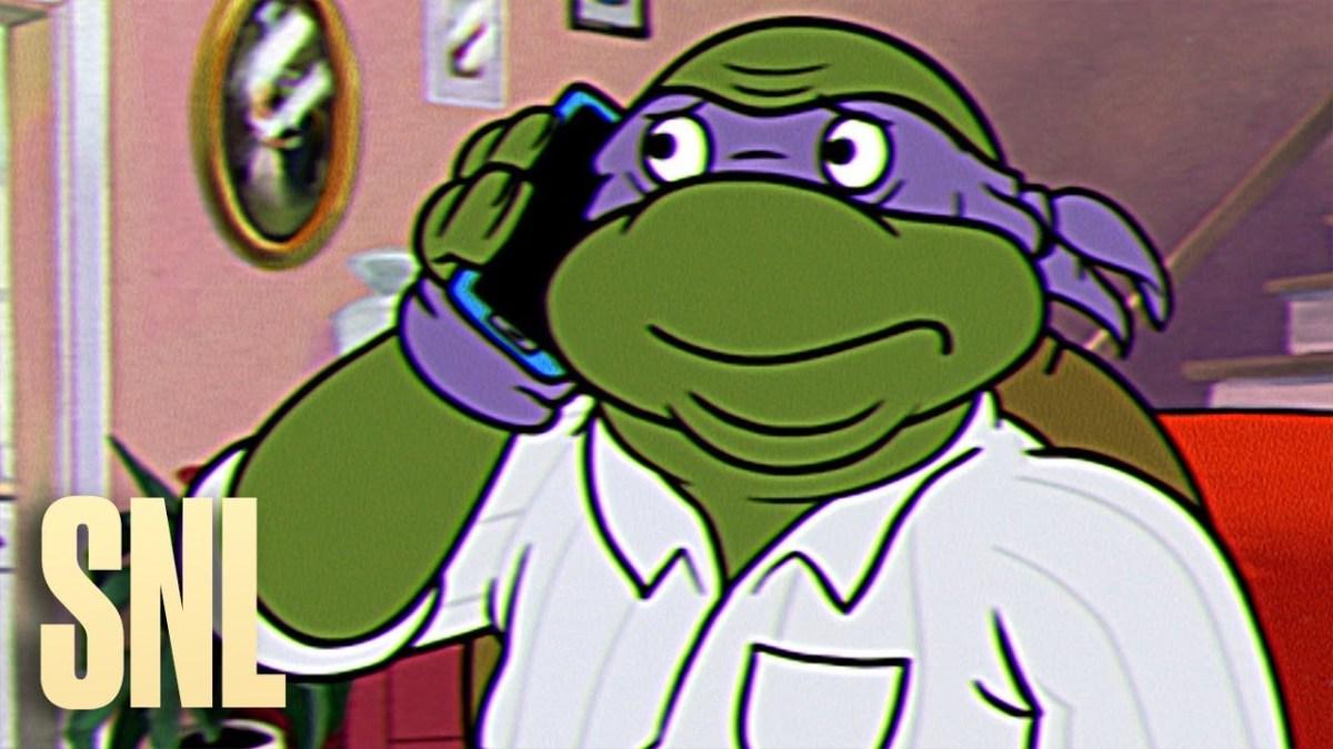 SNL Turtles