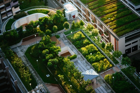 building design with green space helps mental health