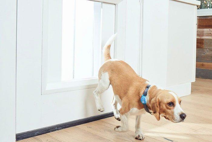 High-tech pet door