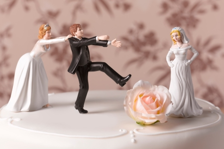 brides fighting over groom cake topper