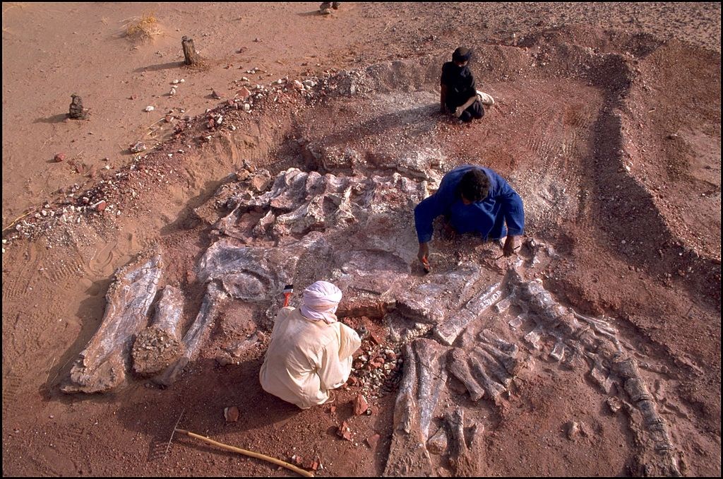 Sahara :The Valley Of Dinosaurs In Niamey, Niger In December, 2000.