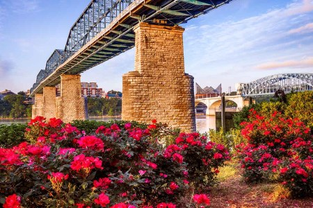 Chattanooga, Tennessee wfh city