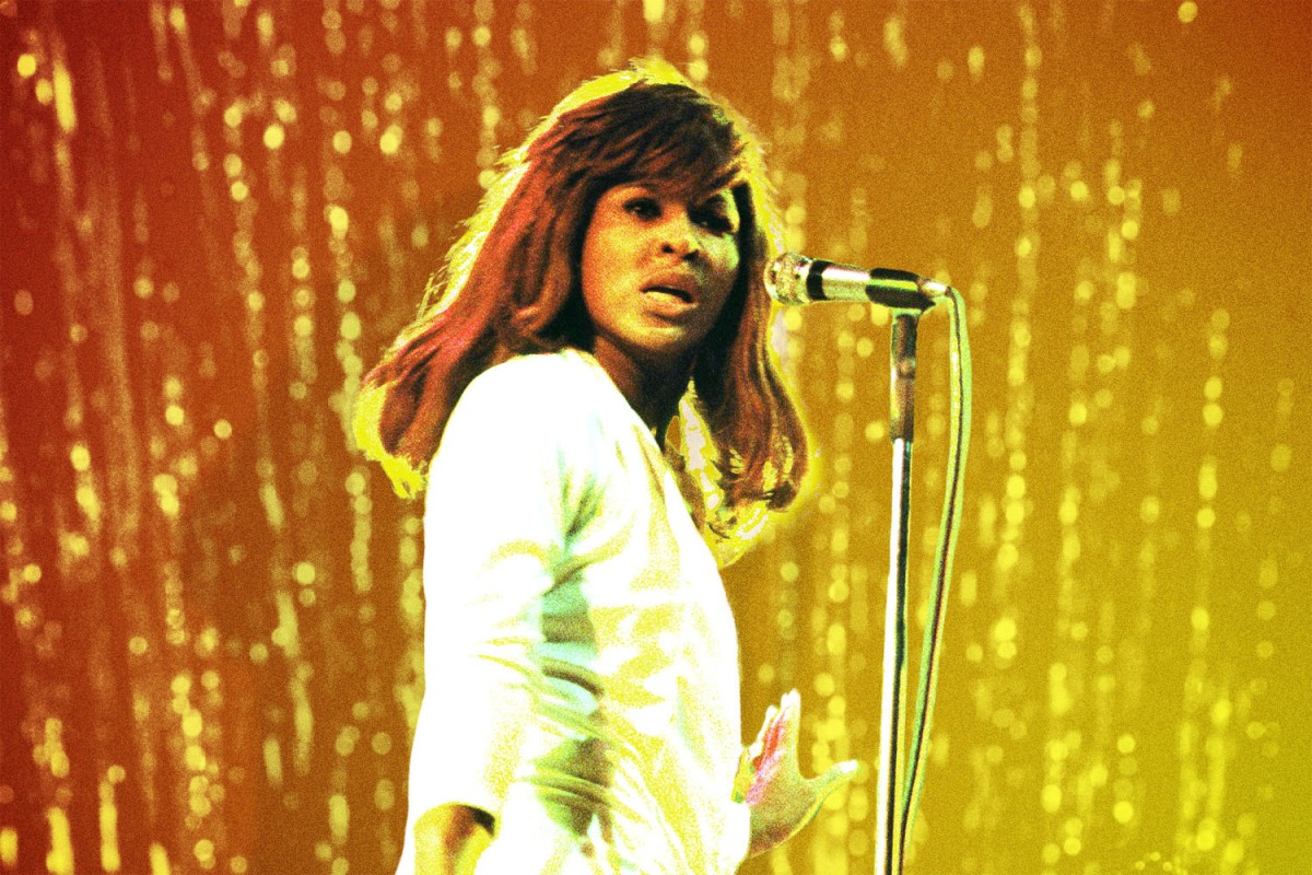 Tina Turner performs onstage